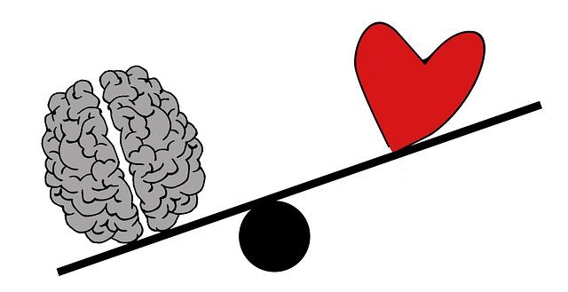 mozek a srdce