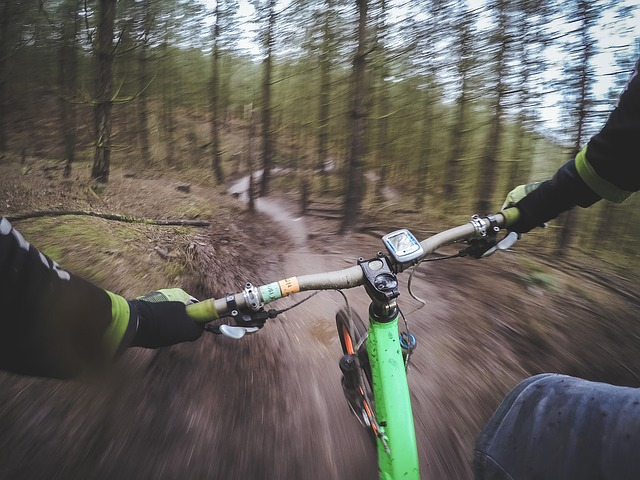 jízda na kole lesem