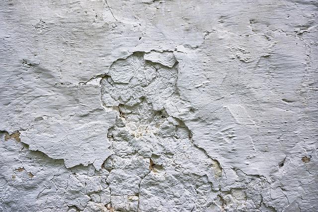 Vlhká a zasolená zeď obsahuje nežádoucí plíseň.
